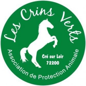 les-crins-verts-logo-transp COMPRESSE WEB